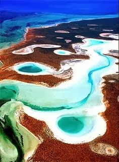 On our bucket list: Shark Bay, Australia. Build your bucket list and make travel plans on Nextt (getnextt.com) #travel #bucketlist