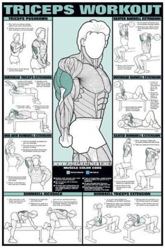 When toning up your upper body it's important to remember to work all your muscles including the triceps to gain those gorgeous cuts you're looking for.