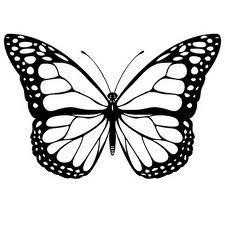 outlines of butterflies - Google Search