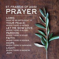 St. Francis of Asisi Prayer