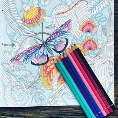 WIP 4,butterfly done . #blendingcolours #blending #colourist #arttherapy #fabercastelpolychromos #milliemarotta #milliemarottafan #milliemarottastropicalwonderland #SAcolourist #colouring #arttips #tips#colouringin#colouringbook #adultcolouring #adultcoloringbook