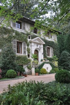 Traditional style southern home with ivy in a peaceful setting, so pretty.