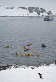 Kayaking off the coast of Half Moon Island - South Shetlands, Antarctica