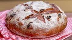 Learn how easy it is to make Homemade Bread, including my Cinnamon Raisin Bread, which is a perfect simple recipe for the fall!