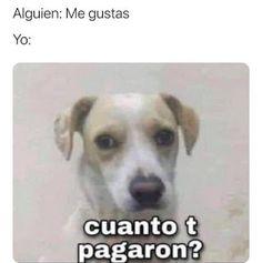 Really Funny Memes, Stupid Funny Memes, Haha Funny, Mexican Funny Memes, Funny Spanish Memes, Funy Memes, Cat Memes, Troll Face, Disney Jokes