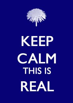 The Reading Fever: Keep Calm: Hunger Games Public Safety Posters