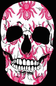 1 of many skulls