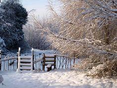 Neve, Inverno, Panorama, Recinzione