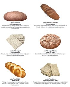 les pains French Class, Croissants, Paris Food, France 2, Kosher Recipes, Pan Bread, French Food, Learn French, Cucina