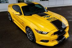 2015 Mustang GT 50 years