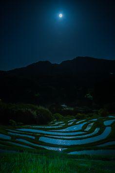月夜の棚田 ,Japan countryside