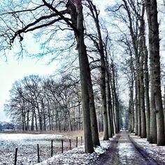 Landgoed Amelisweerd in Bunnik, Utrecht