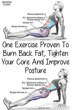 One Simple Exercise To Help Strengthen The Core and Lower Body Okay, today you're going to learn how to reverse plank. One of the first places you gain weight is typically around your belly. It's a…