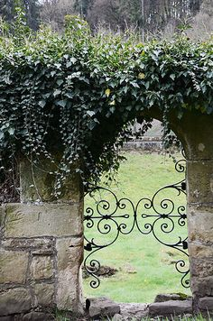 ~ garden gate and ivy growing over stone wall