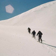 New Zealand, Discovery, Skiing, Camel, Outdoors, Seasons, Adventure, Photo And Video, Friends