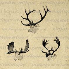 Digital Image Moose Elk Caribou Antlers by VintageRetroAntique