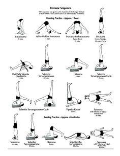 Home Practice Immune Sequence | Ramamani Iyengar Memorial Yoga Institute (RIMYI), Poona, India: yogaforbeginners-...
