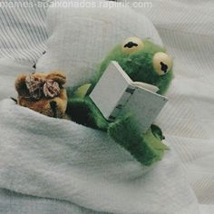 The post appeared first on Kermit the Frog Memes. Frog Wallpaper, Wallpaper Iphone Cute, Cute Wallpapers, Elmo, Cute Memes, Funny Memes, Sapo Kermit, Sapo Meme, Memes Lindos