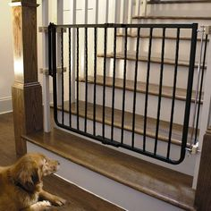 "Cardinal Gates Wrought Iron Decor Hardware Mounted Pet Gate Black 27"" - 42.5"" x 29.5"""