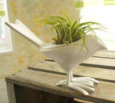 bird planter. whimsy