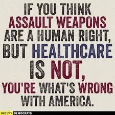 Ifv you think assault weapons are a human right, but healthcare is not, you're what's wrong with America. Satire, Ga In, Protest Signs, Political Views, Whats Wrong, Thats The Way, Republican Party, Thought Provoking, Just In Case