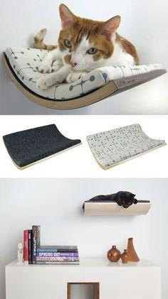 E que tal essas camas fixadas na parede estilo prateleira para o seu gatinho descansar? Uma ideia incrível!
