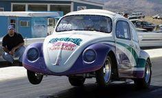 Volkswagen Beetles, Vw, Beetle Car, Pastor, Vw Beetles, Vw Bugs