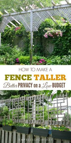Low-budget ways to make a garden fence taller for better privacy.