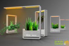 La lámpara eco-amigable   una gran idea para adornar cualquier espacio de trabajo.