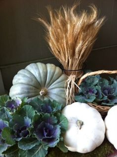 Fall Arrangement....love the blue pumpkin