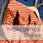 Emergency Dress, and why sometimes the details aren't as important as the big picture