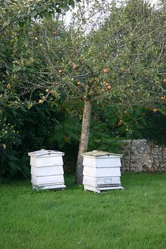 Beehives of Leonard Woolf (husband of author Virginia Woolf) at Monk's House, Rodmell, England