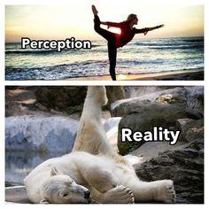 Yoga pose perception vs reality- vinyasa, namaste ... true.. but it feels so good to stretch !