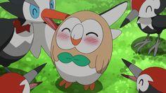 かわいい! モクロー ポケモン pokemon
