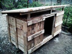 Pallet henhouse coop