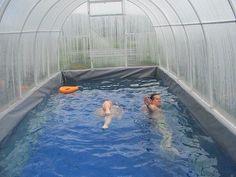 бассейн на даче )