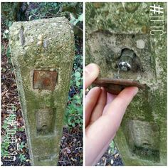 I can't believe I managed to find this! A great hide! emoji #geocaching #geocache #microcache #travelbug #travelbugs #foundit #brains #tb #trackable #gogeocaching #geocachingUK #TFTC #geocachingadventures #letsgogeocaching #geocachingisfun #geocachingisawesome #customcache #UK_Geocacher #cache #cute