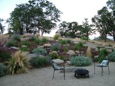 Water Wise Gardening for the Tehachapi Area - Tehachapi Landscape Design