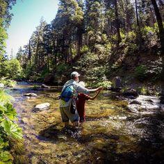"17 Likes, 1 Comments - Bushtips (@bushtips_flyfishing) on Instagram: ""#bustips #bushtipflyfishing #patagoniaflyfishing #orvisflyfishing #reddington #flyfishing"""