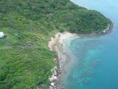 moa island - Google Search
