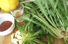 Radika otu, diğer bilindik adı ile karahindiba otu, farklı şekiller de kullanılan faydalı bir ottur. Bu otun özellikle kök kısmı kullanılmaktadır. Ancak ülkemizde yaygın olarak bitkinin çayı tüketilmektedir. Radika otunun bitkisel çay olarak hazırlanıp tüket Seaweed Salad, Celery, Green Beans, Gluten, Herbs, Vegetables, Health, Ethnic Recipes, Food