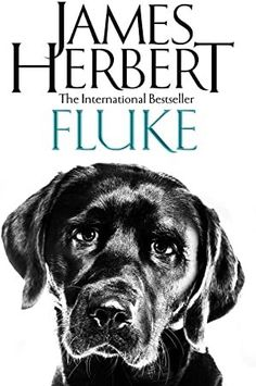 """Read """"Fluke"""" by James Herbert available from Rakuten Kobo. Fluke is the moving story of a dog with the memories of a human, with the signature twisting plot James Herbert is famed. Got Books, Books To Read, James Herbert, Non Fiction, What To Read, Book Photography, Free Reading, Love Book, Reading Online"""