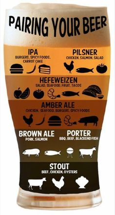 Infographic provides guidance for non-craft beer drinkers | Craft ...