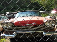 """My friend's """"Christine"""" car, '58 Plymouth Fury, one that was used in the movie production!"""