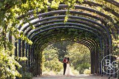 Clara & Kyle, Descanso Gardens Wedding, Los Angeles Wedding Photographer