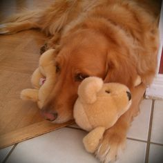 Rufus and his baby