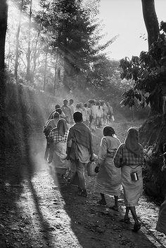 Sebastião Salgado chronicles and celebrates coffee growers Coffee farm. Ossoor Estates. Karnataka State, South India 2003. ©SEBASTIAO SALGADO/AMAZONAS IMAGES FOR ILLY