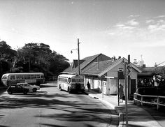 Cremorne Point in northern Sydney in 🌺 Metro Rail, Bus Stop, Live In The Now, Visual Communication, Sydney Australia, North Shore, South Wales, Historical Photos, Buses