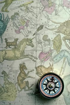 Star Map And Compass by Garry Gay