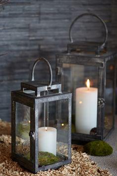 Collection Forêt enchantée. Lanterne Jordan en acier et en verre. botanic®